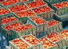 Lo 'scandalo della passata': paghiamo più la bottiglia del pomodoro