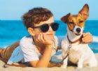 Ferragosto in spiaggia con Fido, le regole per essere tranquilli e tutelati