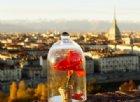Le più belle fotografie di Filippo Lacetera