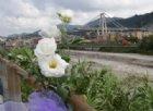 11.36: Genova si ferma a un mese esatto dalla tragedia del ponte Morandi
