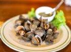 Molluschi efficaci quanto la chemio per combattere il cancro