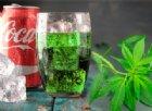 Arriva la Cannabis Cola. La Coca Cola intende produrre bibite con marijuana