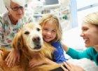 I cani da pet therapy possono far male ai bambini