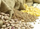 L'acido fitico negli alimenti è davvero pericoloso? Ecco tutto ciò che dovresti sapere