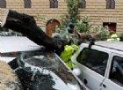 Rischio di violenti nubifragi, scuole chiuse a Roma, Genova e in Veneto