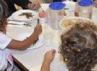 Cucine da incubo nelle scuole italiane: cibi scaduti, topi e insetti. 7 istituti chiusi