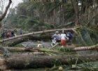 Tempesta nelle Filippine, bilancio sale a 68 morti