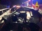 Lodi, cinghiali invadono la A1: un morto e dieci feriti