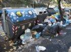 A Roma è emergenza sanitaria: rifiuti per strada, ratti nelle scuole