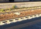 Ragazzo friulano si getta sotto un treno e sopravvive