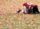 Super Bowl 2020, i Kansas City Chiefs vincono dopo 50 anni