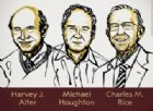 Alter, Hughton e Rice: chi sono i Nobel per la Medicina 2020