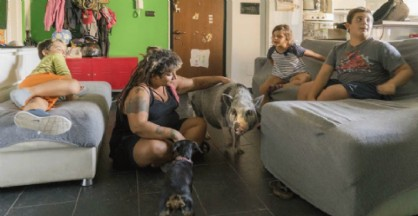 «Elvis the pig» con la sua famiglia, in casa