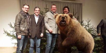L'orso tarvisiano morto in un incidente diventa l'attrazione di Feistritz