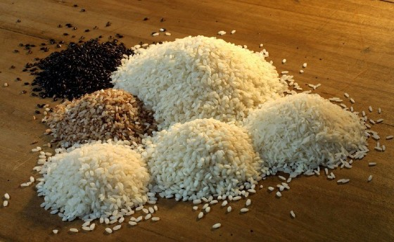 Diverse qualità di riso