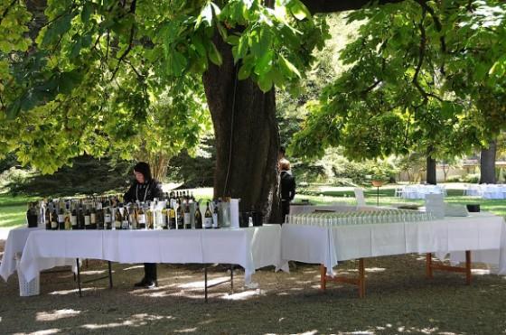 Si stappano i vini del Roero per la degustazione en plein air