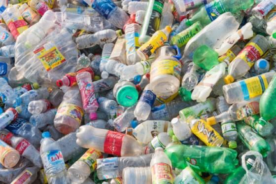 Il batterio distrugge la plastica (© Shutterstock.com)