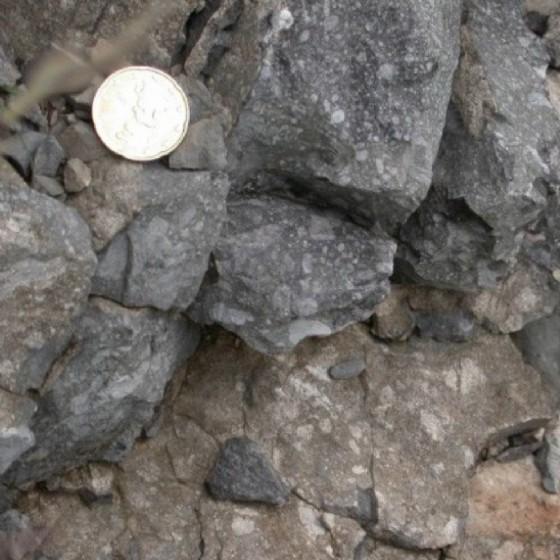Il geosito di Padriciano