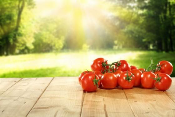 Pomodori contro l'infertilità maschile