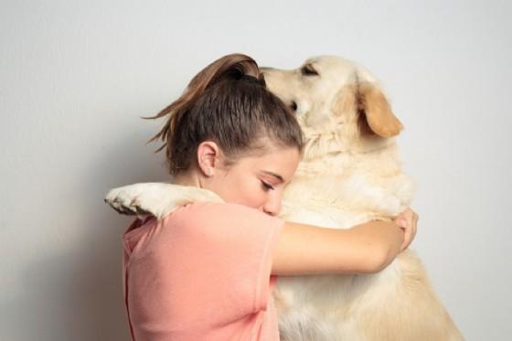 I cani non amano essere abbracciati (© FRANCISGONSA | Shutterstock.com)