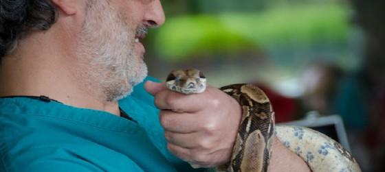 Incontro con il veterinario (© Casa delle Farfalle di Bordano)