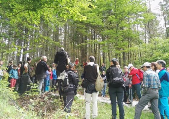 Le persone arrivate in Val Saisera alla scoperta del legno di risonanza (© Risonanze)