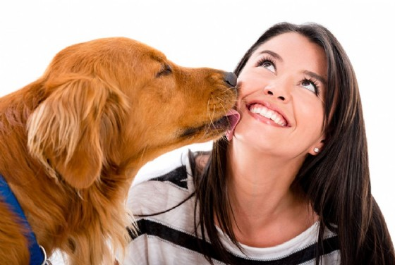 Si fa leccare dal cane e rischia di morire