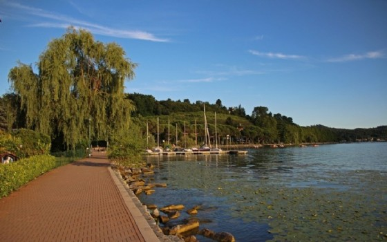 Un particolare della passeggiata sul lago di Viverone (© Diario di Biella)