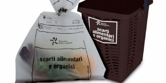 I rifiuti organici della città di Roma vengono smaltiti in Fvg (© amaroma.it)