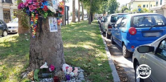 Il luogo dov'è morto Ivan nel 2012