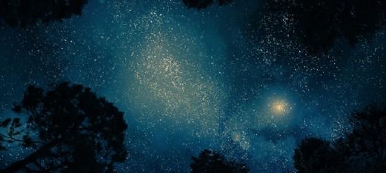 La notte di San Lorenzo in Fvg, ecco alcuni consigli per osservare meglio le stelle (© AdobeStock | kaalimies)