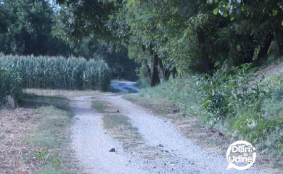 L'ippovia tra Tavagnacco e Pagnacco (© Diario di Udine)