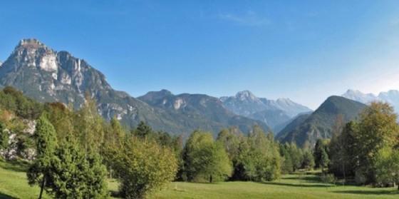 Uno scorcio del Parco delle Prealpi Giulie (© Diario di Udine)