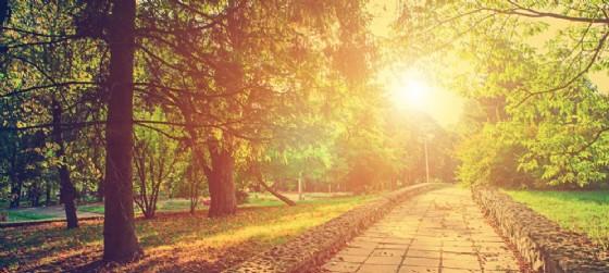 Nuovi appuntamenti al Parco Desio di Udine (© AdobeStock | Ruslan Ivantsov)