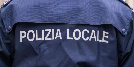 In via di definizione il nuovo regolamento di Polizia locale a Udine (© Adobe Stock)