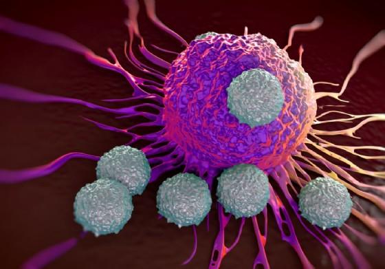 Tumori: taglia-incolla di 2 geni riduce cellule del cancro