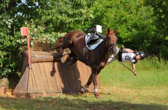 E' morta la ragazza caduta a cavallo nei giorni scorsi (© Adobe Stock)