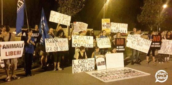 La protesta degli animalisti davanti al circo