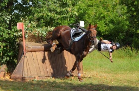 Dopo l'incidente a cavallo che ha coinvolto una 12enne, indagate le istruttrici (© Adobe Stock)