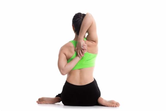 La posizione del muso di mucca vista posteriore