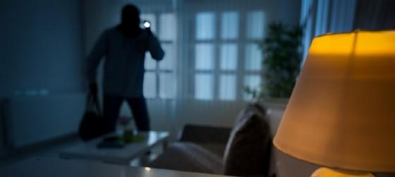 Ladro entra in casa mentre il proprietario è in giardino (© AdobeStock | Igor Mojzes)