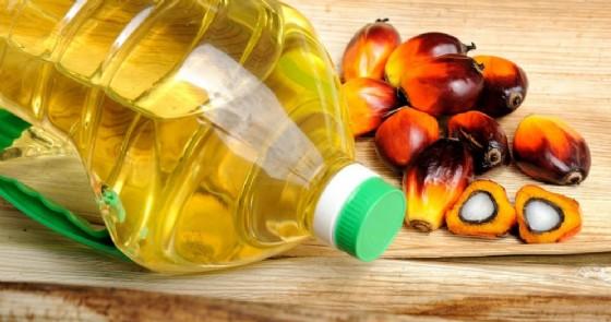 Olio di pamla, pare possieda proprietà antitumorali (© tristan tan | Shutterstock.com)