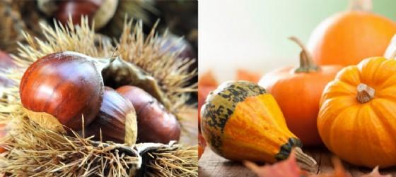 Moltissimi gli appuntamenti in programma per sabato 22 ottobre in provincia di Udine (© Adobe Stock)
