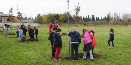 Una festa degli alberi a Udine (© Comune Ud)