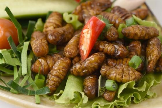 Cibi a base di insetti (© wasanajai | shutterstock.com)
