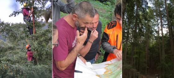 SuperAlberi: il team friulano a 'caccia' dell'albero più alto