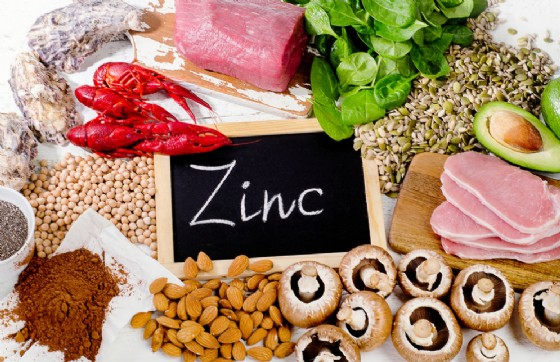 Zinco, è importante assumerne a sufficienza (© Tania Kolinko   shutterstock.com)