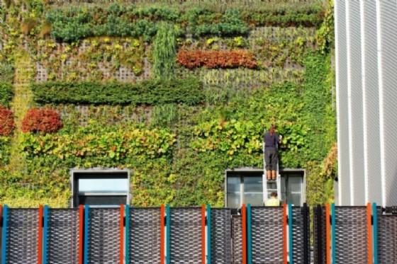 Il creatore e promotore del concetto di fattorie verticali sarà per la prima volta in Italia ad aprire le conferenze sul Vertical Farming