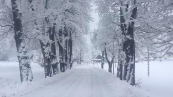 La neve caduta a Camporosso (© Diario di Udine)