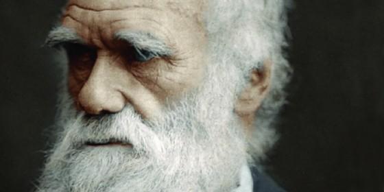 Udine celebra anche quest'anno il Darwin day (© www.civicimuseiudine.it)